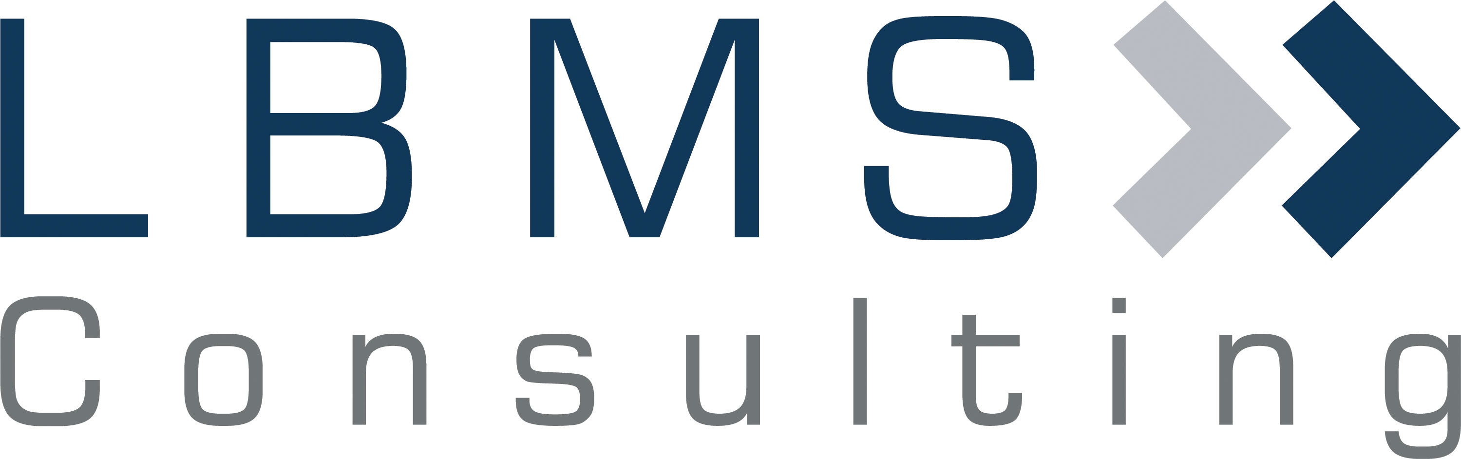 LBMS Consulting